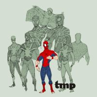 spidey set by timpu