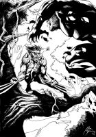 Wolverine vs Sabertooth Inks by adr-ben