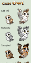 Adopt -Chibi Owls- by elen89
