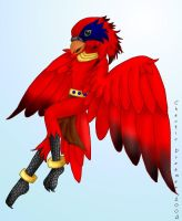Random Anthro Lory by chaoticdreamer
