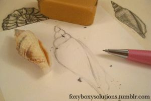 Seashell Drawing Process GIF by foxyboxysolutions