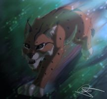 Ascar- Lynx OC by Gashu-Monsata