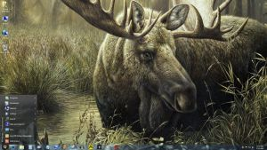 Windows 7 on Nanook - Time With Moose by slowdog294
