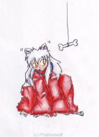 Sushi Aktion: Inuyasha by Phantom--Wolf