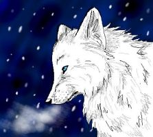 Snow Fox by Joava