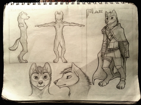 Max reference sheet by Maximum993