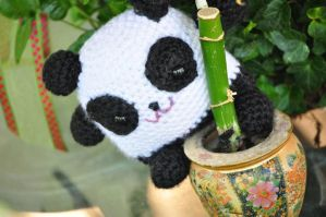 Panda on bamboo by AmiAmiLuLu