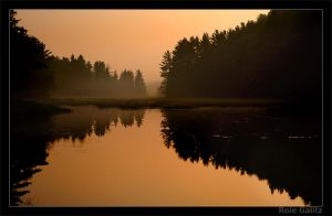 Good Morning Algonquin by RoieG