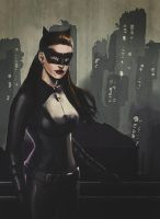 TDKR Catwoman by brianlaborada