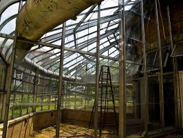 Old Greenhouse by alimuse