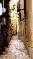 Palermo alley by Dogbytes