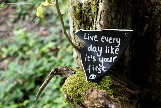 Live Every Day Like It's Your First by Rhiallom