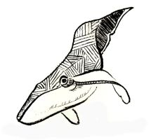 whale by just1dreamer