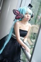 Vocaloid Magnet - Miku by Xeno-Photography
