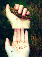 whole life in my hands by belie-photo