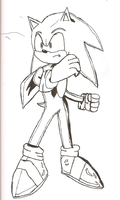 Sonic Try To Pose Cool. by shadow759
