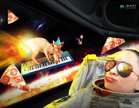 Cats On Synthesizers by LadyChilla