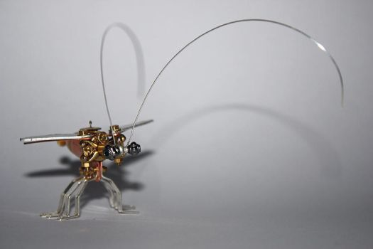 Steampunk bug by hardwidge
