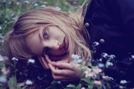 forget-me-not by yessamine