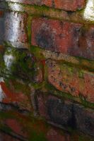 Red Brick Macro by S-H-Photography