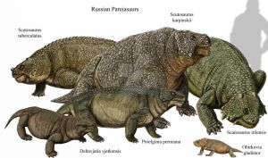 Russian Pareiasaurs by DiBgd