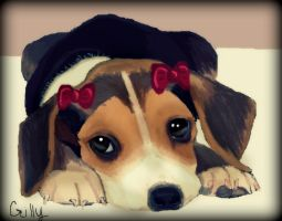 beagle puppy by gilly15