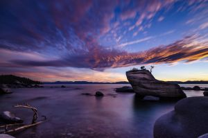 Bonsai Rock by prateekverma23