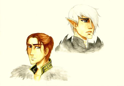 DA2 Character Study by Cephis