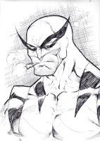 Old school wolverine quicky by Kid-Destructo