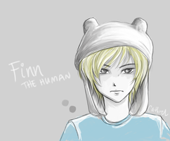 Finn The Human by germanmissiles