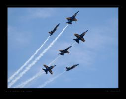 Blue Angels Bloom by jdmimages