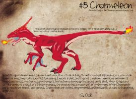 Field Study: Charmeleon by TravestyYM