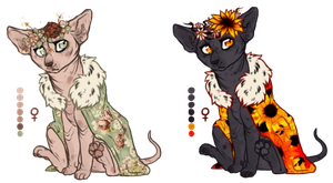 Princess Sphynx [ SELLING LIGHTER ONE ] by pandoras-island