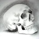 skull by lashingtail