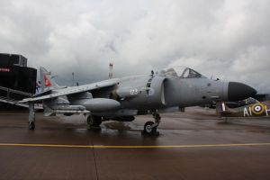 Harrier by james147741