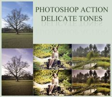 Photoshop Action - Delicate Tones by ysndkn