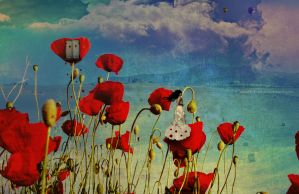The Poppy Lady by cande-knd