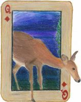 Queen of Diamonds: The Doe by KefiraDalila