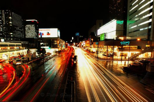 City of lights by pmsmgomes