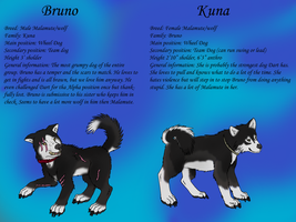Bruno And Kuna by jmillart