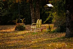 Empty Yellow Chair by tracykenefick