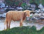 Highlander - acrylic painting by Giselle-M