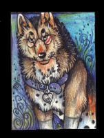 Aliyah-TimberWulf ACEO by Suenta-DeathGod