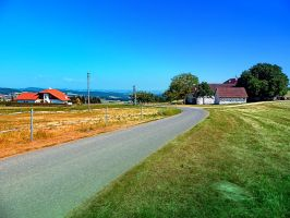 Another country road in summertime by patrickjobst
