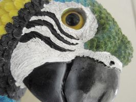 parrot 2 by izzy-rox13