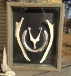 Hyoid Bone Shadow Box by TarpanBeadworks