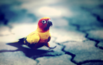 Parrot Wallpaper by Prollgurke
