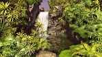 Jungle waterfall by Lance66