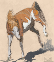 Painted Horse by Lithestep