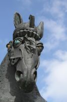 Ansbach horse by utico